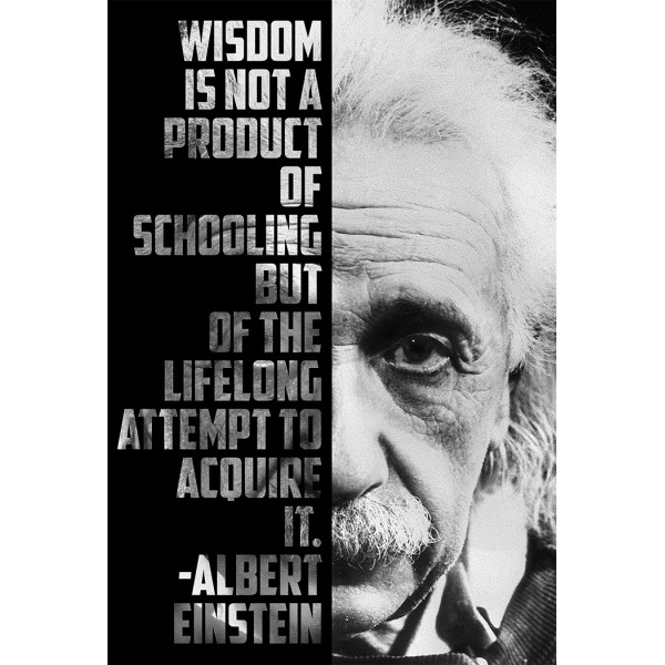 Wisdom is a product of lifelong attempt to acquire it - Albert Einstein
