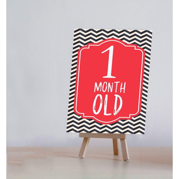 Baby Milestone Cards With Easel Stand