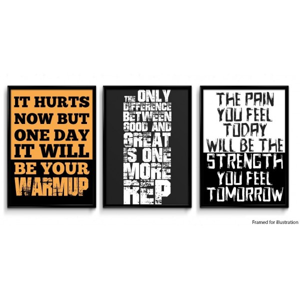 Set of 3 Gym Motivational Posters